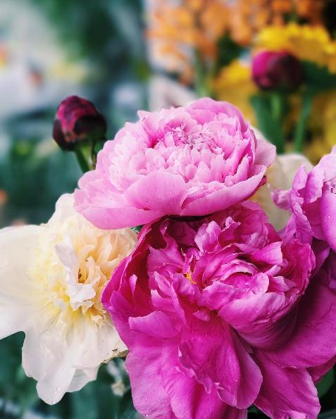 8 idées de cadeaux parfaits à offrir pour la fête des Mères