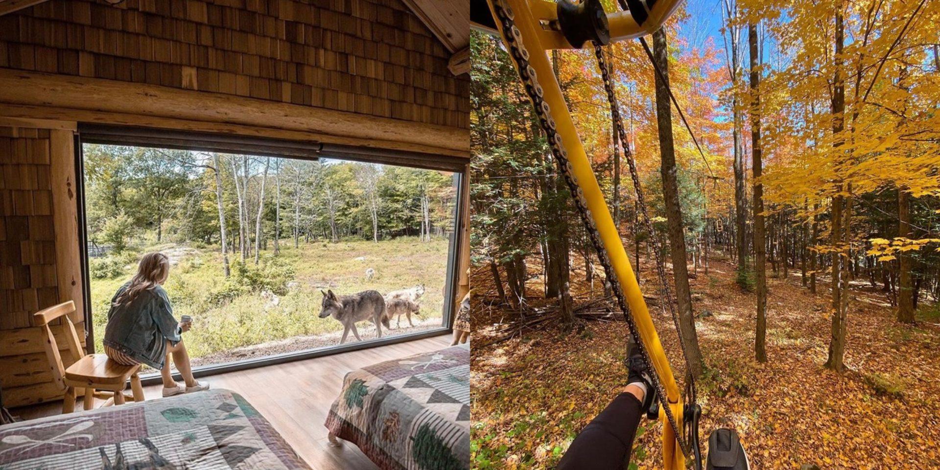 Nature et plein air: 8 activités à faire cet automne pour profiter des paysages d'ici!