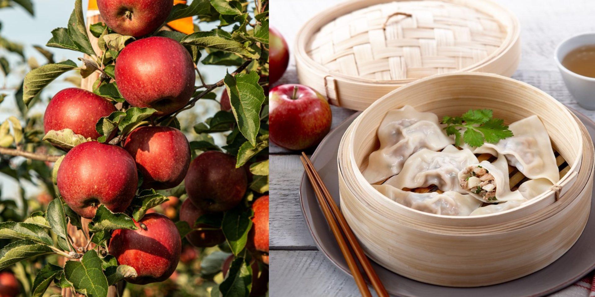 5 recettes funky avec des pommes pour cuisiner après votre sortie au verger!