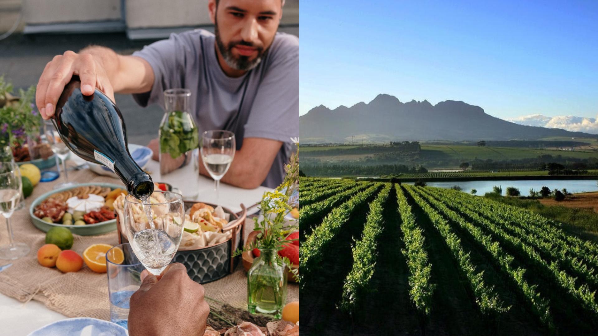 Voici 5 vins durables d'Afrique du Sud à découvrir pour le Jour de la Terre!